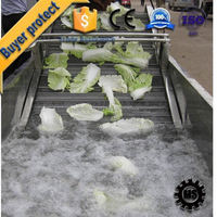 Direct Factory leafy fruits vegetable washer for export