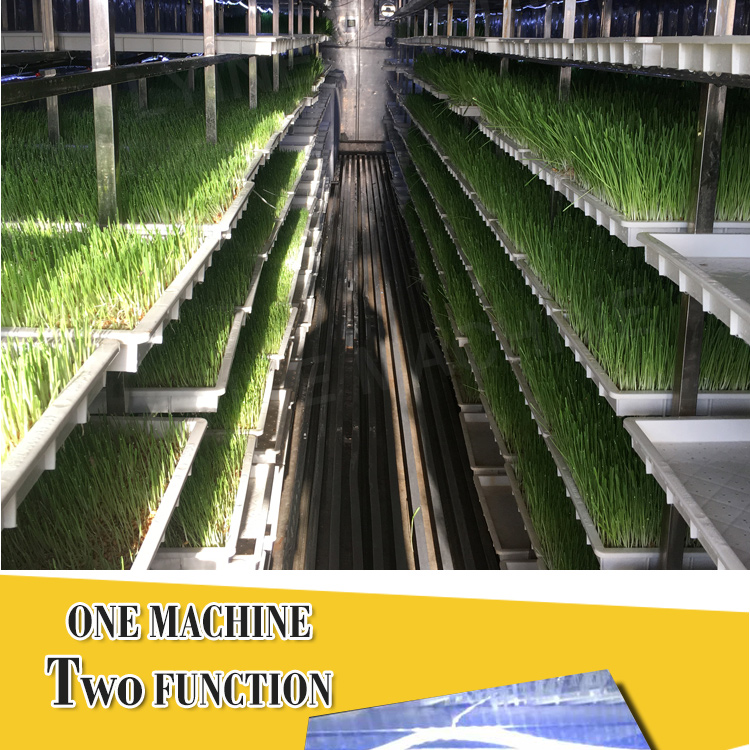 Hydroponic growing system hydroponics grow kit aquaponics grow fodder trays vegetable plant greenhouse vertical aquaponics