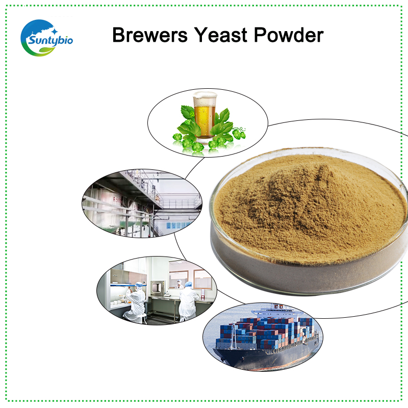 feed additives brewer yeast with 40% protein