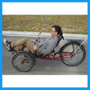 Outdoor unique bike adult recumbent trike frame sale