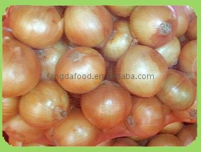 fresh chinese onions on promotion