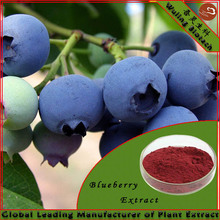 Blueberry Extract Ingredients