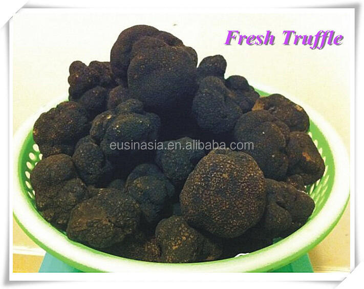 Sell Fresh chinese black truffle