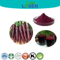 Natural Food Colorant Black Carrot Juice Concentrate Powder