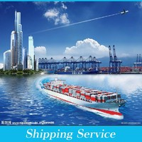 foreign trading & logistics from China----ben