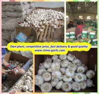 China Garlic Type and Organic Cultivation Type Artificial Garlic