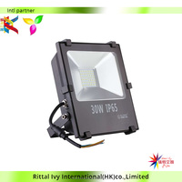 hot sale 2016 newest LED Light Black Color 30w 50w 100w led flood light