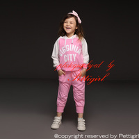 Hot seller girl clothing set Baby Clothing Set 2pcs sport clothing set baby wear in 1 lot 2 colors : pink and grey CS10711-31