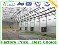 commercial polycarbonate sheet greenhouses for sale