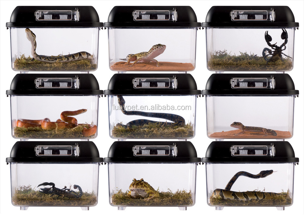 Portable plastic reptile cage breeding box, for insect and small reptile keeping