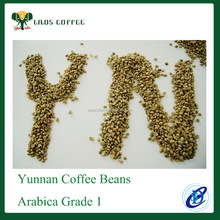 Coffee Beans from one of the largest producer Yunnan ARABICA coffee beans