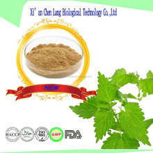 Healthy Herbal Extract Smartweed Nettle Leaf Powder