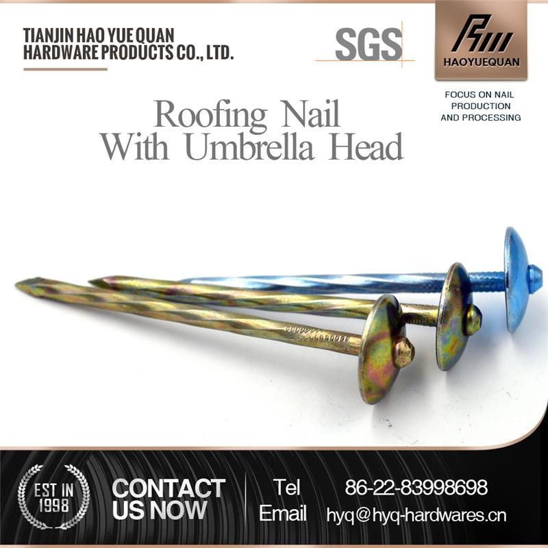 Multifunctional glavanized roofing nail lead roofing nails