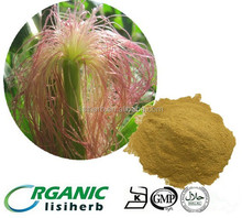 100% natrual High Quality Corn silk powder for improving health