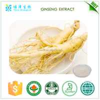 Herb medicine Ginsenosides Ginseng root extract