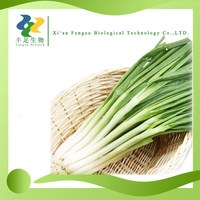 100% pure Dehydrated chive powder,Dried chive powder