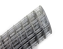 10 gauge welded wire meshes with factory price
