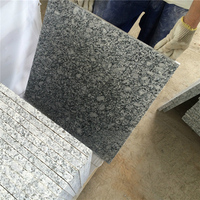 China Factory Price Light Grey Spray White Cheap Granite Tile