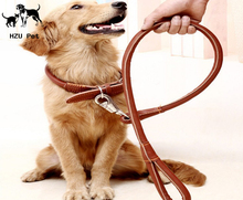 A Basic Classic Padded Genuine Leather Pet Collars + dog leash for dog Puppy Small Medium large Dogs by HZU