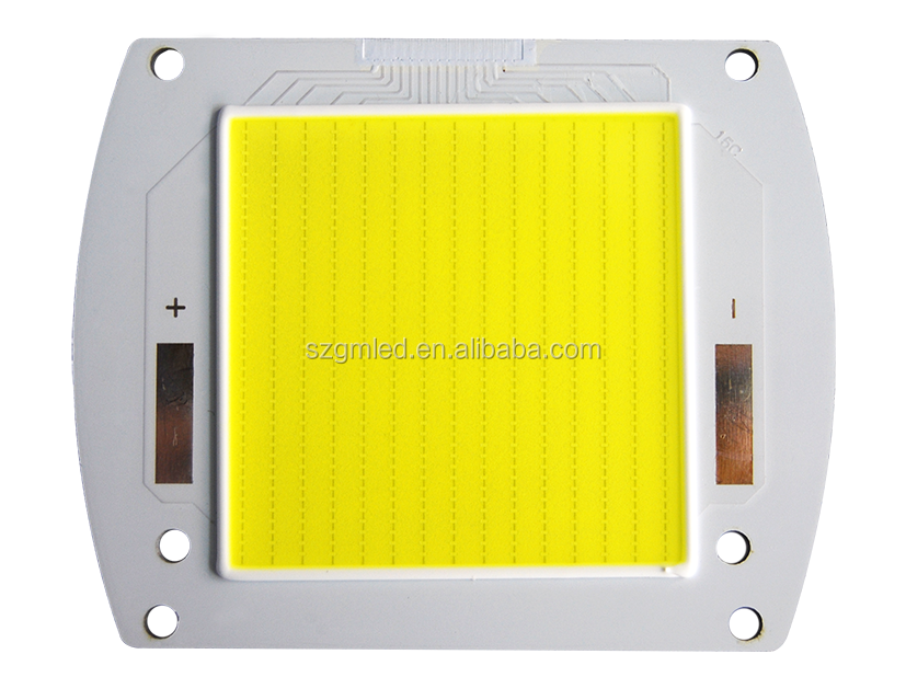 Hot Sell Energy Saving 5W 10W 15W 20W 100W 300W 150W Flip Chip LED Details Used Fiber-coupled lllumination