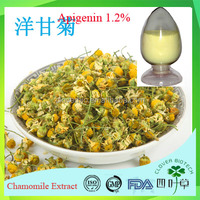 GMP factory supply water soluble food grade Chamomile extract Apigenin 98%