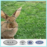 galvanized or PVC coated chicken wire cage mesh for poultry / hexagonal wire mesh