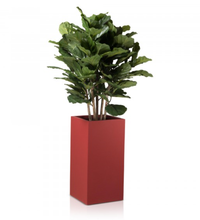 Home and Garden Plant Container Pot Planter for Sale