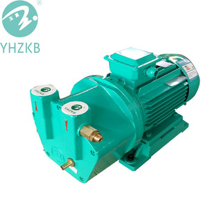 SK -0.2 0.75Kw Water Ring Vacuum Pump for vacuum cleaning plant