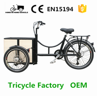 electric tricycle cargo bike with pedal