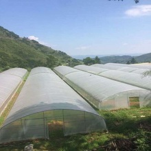 Cheap price tunnel greenhouse for tomato farms