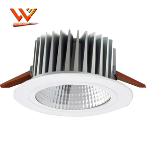 21W Citizen Cob Led Downlight With 130Mm Cutout