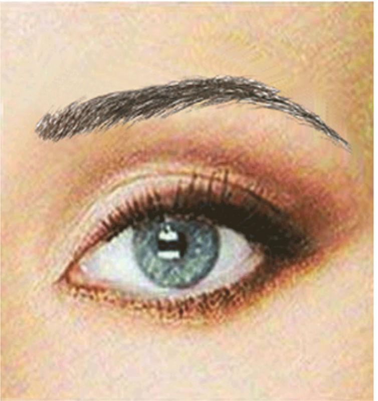 Beauti Full Brows Temporary Tattoo Eyebrows Buy False Eyebrows