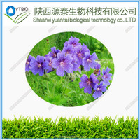Supply 100% Natural Geranium Flower Extract Powder