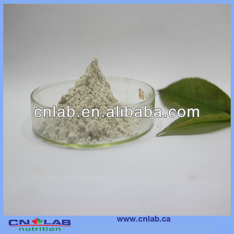 Boswelia Serrata Extract 45% 65%