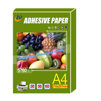 Self Adhesive Glossy Photo Paper PP