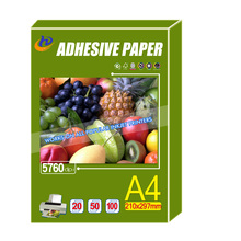 self adhesive glossy photo Paper , PP Transparent PET PVC Sticker Photo Paper 135gsm