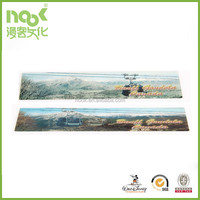 3D Lenticular Ruler PP PET Material with high quality