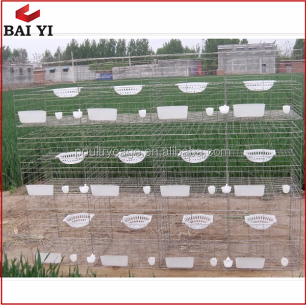 Commercial Strong Metal Cages For Racing Pigeons
