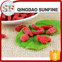 Chinese Ningxia himalayan goji berry seed in new crop