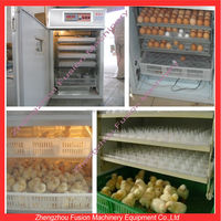 commercial incubator/large chicken incubator/mini egg incubator for sale