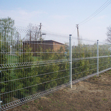 wholesale Ornamental Double Loop Wire Fence