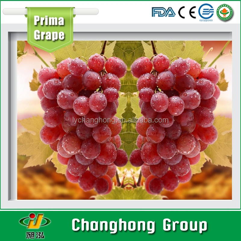 Xinjiang Fresh Red globe grapes from China