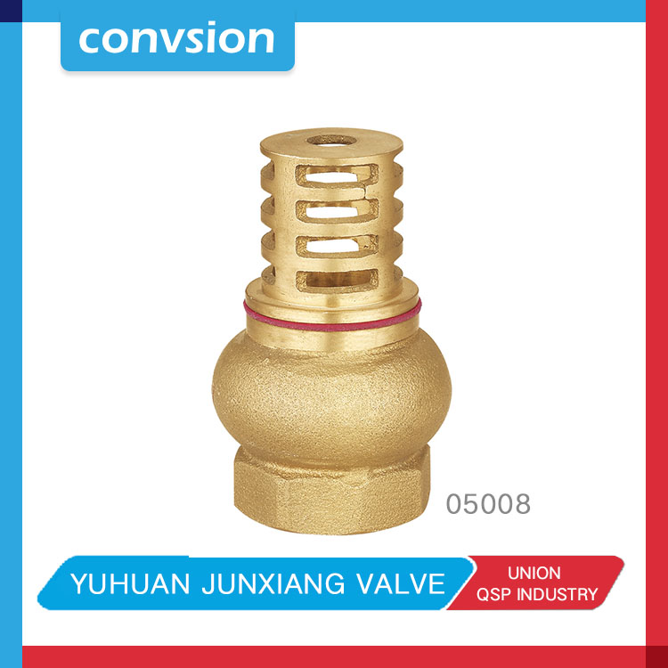 good quality brass check & foot valves