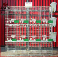 Factory Price Good Quality Pigeons Farming Cage Racing For Breeding Pigeons