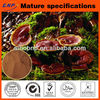 Reishi Mushroom Extract Powder Triterpene and Polysaccharides
