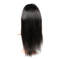 Free Shipping Glueless Brazilian Straight Hair Lace Front Wig