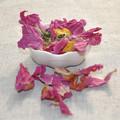 natural beaty slimming tea herbaceous peony flower