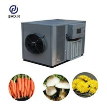 New style clay brick dryer machine citrus dehydrator chocolate beans with individual generators