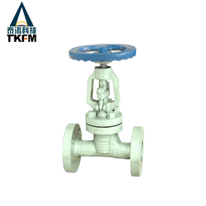 TKFM factory directly sale ansi 300 flange cast iron gate valve renewable seat ring gate valves specifications