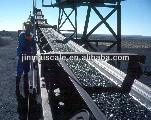 Coal plant automatic weighing systems